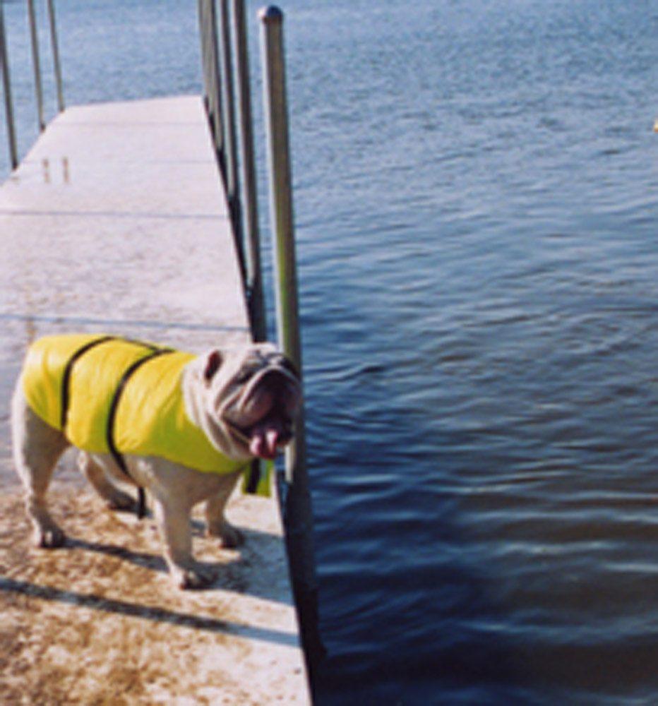 Bulldog Lifejacket